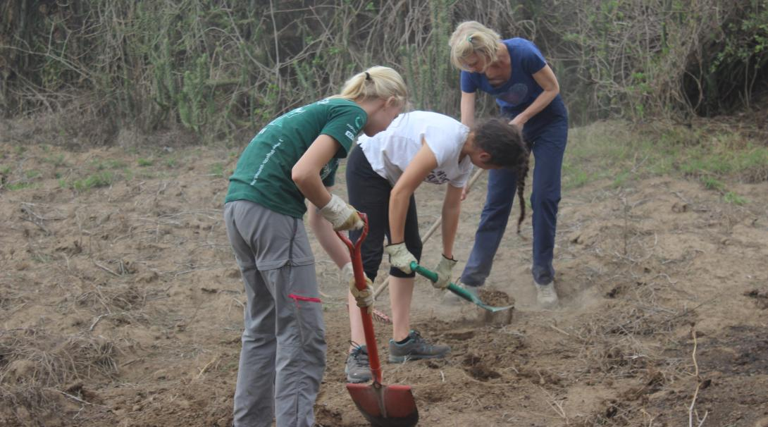 Projects Abroad Giraffe and Lion conservation volunteers help with re-forestation activities in Kenya.